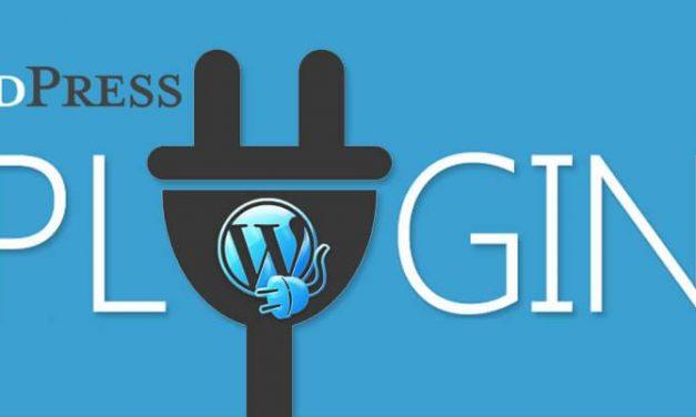 5 Essential Plugins for WordPress Niche Site
